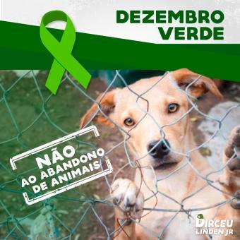 Dezembro Verde contra o abandono de animais